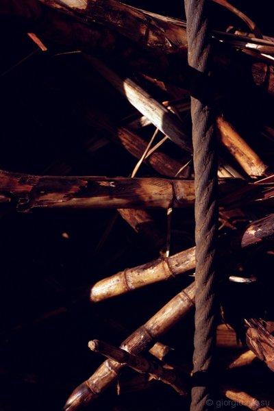 Carico canna da zucchero fissata su camion con cavi acciaio © giorgio cossu.jpg