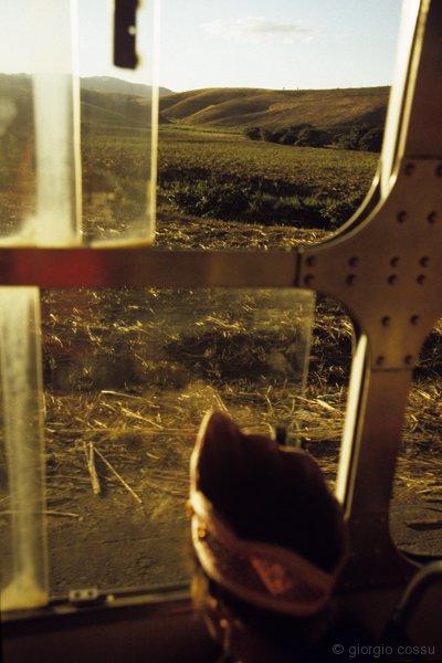 Una dama del Maracatu Estrla de Ouro durante una trasferta tra i campi di canna da zuchero © giorgio cossu.jpg