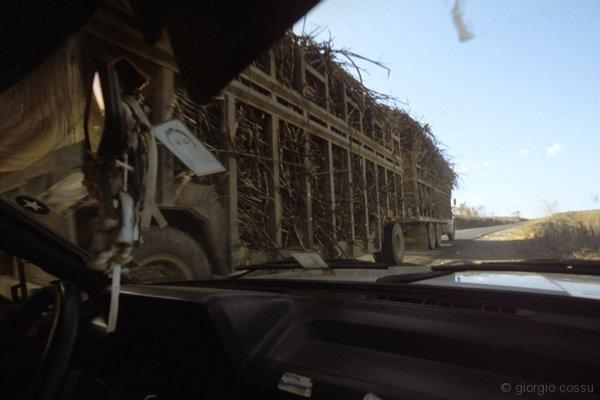 Convoglio verso la raffineria di canna da zucchero appena raccolta © giorgio cossu.jpg
