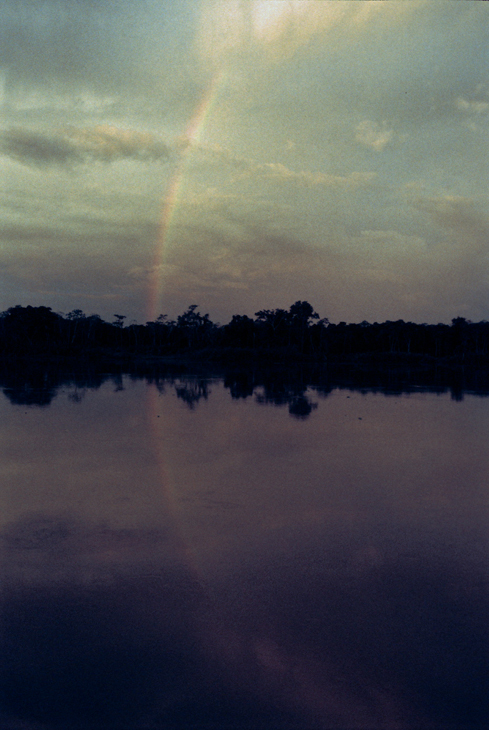 rainbow-amazon-forest-nauta-peru